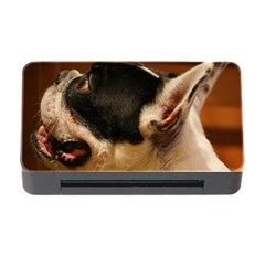French Bulldog black white Memory Card Reader with CF