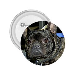 French Bulldog Brindle 2.25  Buttons