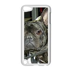 French Bulldog Brindle Apple iPod Touch 5 Case (White)