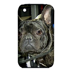 French Bulldog Brindle iPhone 3S/3GS