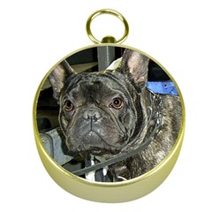 French Bulldog Brindle Gold Compasses