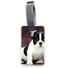 Brindle Pied French Bulldog Puppy Luggage Tags (One Side)