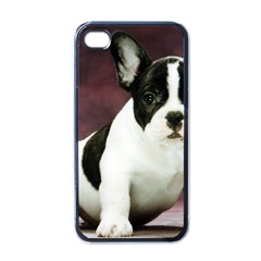 Brindle Pied French Bulldog Puppy Apple iPhone 4 Case (Black)
