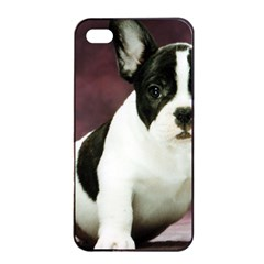 Brindle Pied French Bulldog Puppy Apple iPhone 4/4s Seamless Case (Black)