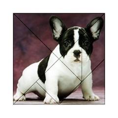 Brindle Pied French Bulldog Puppy Acrylic Tangram Puzzle (6  x 6 )