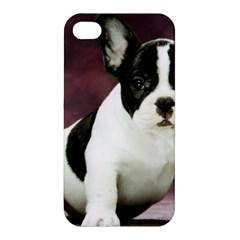 Brindle Pied French Bulldog Puppy Apple iPhone 4/4S Premium Hardshell Case