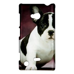 Brindle Pied French Bulldog Puppy Nokia Lumia 720