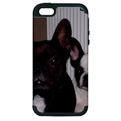 2 French Bulldogs Apple iPhone 5 Hardshell Case (PC+Silicone)