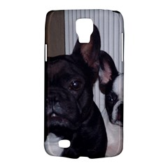 2 French Bulldogs Galaxy S4 Active