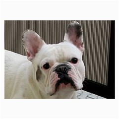 French Bulldog White Large Glasses Cloth