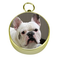 French Bulldog White Gold Compasses