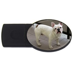 French Bulldog Full USB Flash Drive Oval (1 GB)