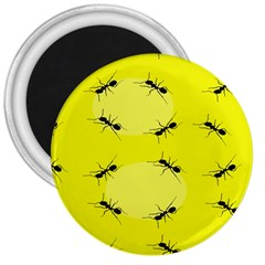 Ant Yellow Circle 3  Magnets