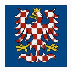 Flag of Moravia  Medium Glasses Cloth