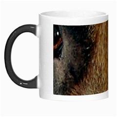 German Shepherd Eyes Morph Mugs