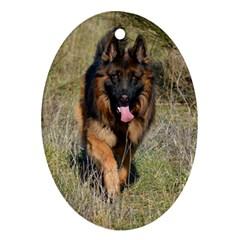German Shepherd In Motion Ornament (Oval)