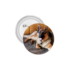 German Shepherd Laying 2 1.75  Buttons