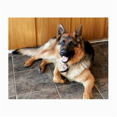 German Shepherd Laying 2 Small Glasses Cloth