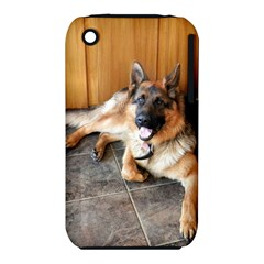German Shepherd Laying 2 iPhone 3S/3GS
