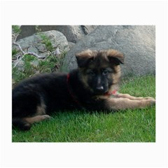 German Shepherd Puppy Laying 2 Small Glasses Cloth