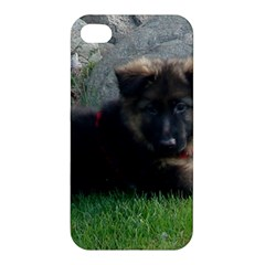 German Shepherd Puppy Laying 2 Apple iPhone 4/4S Hardshell Case