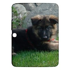 German Shepherd Puppy Laying 2 Samsung Galaxy Tab 3 (10.1 ) P5200 Hardshell Case
