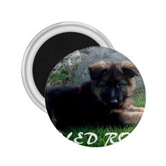 Spoiled Rotten German Shepherd 2.25  Magnets