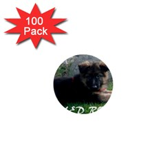 Spoiled Rotten German Shepherd 1  Mini Buttons (100 pack)