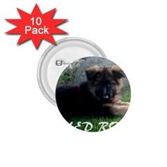 Spoiled Rotten German Shepherd 1.75  Buttons (10 pack)