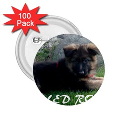 Spoiled Rotten German Shepherd 2.25  Buttons (100 pack)