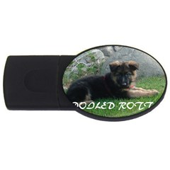 Spoiled Rotten German Shepherd USB Flash Drive Oval (2 GB)