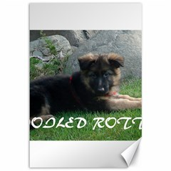 Spoiled Rotten German Shepherd Canvas 12  x 18