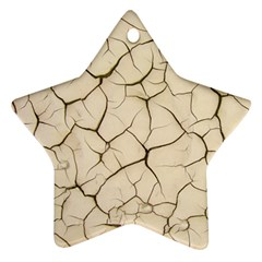 Drought Soil Land Ornament (star)