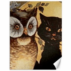 Owl And Black Cat Canvas 36  x 48