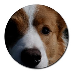 Red Border Collie Round Mousepads