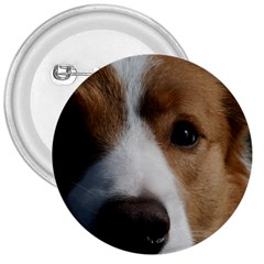 Red Border Collie 3  Buttons