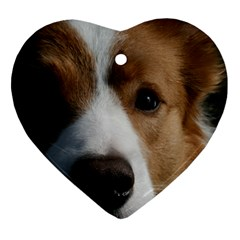 Red Border Collie Ornament (Heart)
