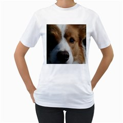 Red Border Collie Women s T-Shirt (White) (Two Sided)