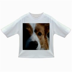 Red Border Collie Infant/Toddler T-Shirts