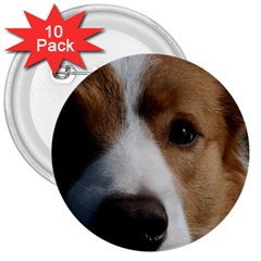 Red Border Collie 3  Buttons (10 pack)