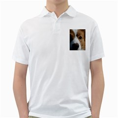 Red Border Collie Golf Shirts