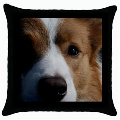 Red Border Collie Throw Pillow Case (Black)