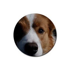 Red Border Collie Rubber Coaster (Round)