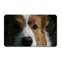 Red Border Collie Magnet (Rectangular)