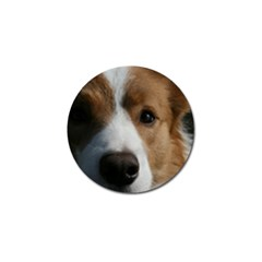 Red Border Collie Golf Ball Marker (10 pack)