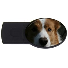 Red Border Collie USB Flash Drive Oval (1 GB)