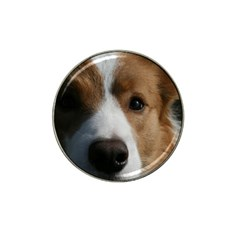 Red Border Collie Hat Clip Ball Marker