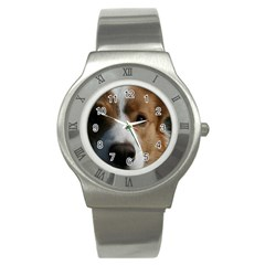 Red Border Collie Stainless Steel Watch