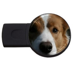 Red Border Collie USB Flash Drive Round (4 GB)