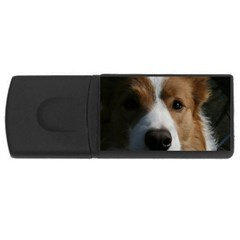 Red Border Collie USB Flash Drive Rectangular (4 GB)